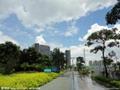 深圳风景 (1)