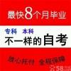 广州少儿英语口语培训课程