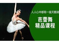 吴江芭蕾舞精品课程