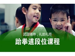 吴江跆拳道段位课程