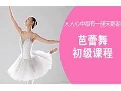 吴江芭蕾舞初级课程