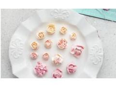 无锡蛋糕裱花课程1+2