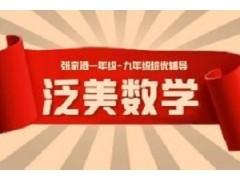 张家港泛美数学