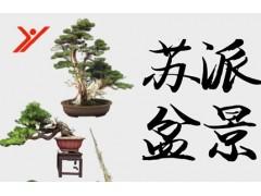 苏州苏派盆景艺术鉴赏